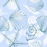 Hand drawn  illustrations - seamless pattern of seashells. Marine background. Vector template. Hand drawn  illustrations - seamless pattern of seashells. Marine Royalty Free Stock Images