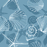 Hand drawn  illustrations - seamless pattern of seashells. Marine background. Vector template Royalty Free Stock Images