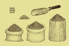 Hand drawn illustrations with wheat grains in sacks and barrels Royalty Free Stock Image