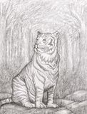 Hand Drawn Image of a Tiger Stock Photos