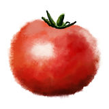 Hand drawn image of tomato Royalty Free Stock Images