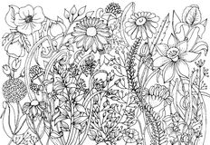 Hand drawn with ink background with doodles, flowers, leaves. Nature design for relax and meditation. Royalty Free Stock Photography