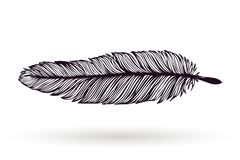 Hand drawn ink feather Stock Photo
