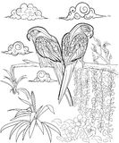 Hand drawn ink pattern. Coloring book for adult Stock Photography