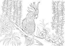 Hand drawn ink pattern. Coloring book Coloring for adult Page for coloring book: very interesting and relaxing Stock Images