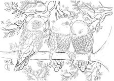 Hand drawn ink pattern. Coloring book Coloring for adult Page for coloring book: very interesting and relaxing Royalty Free Stock Image