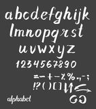 Hand drawn ink Vector alphabet Stock Image