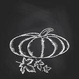 Hand drawn invitation with pumpkins on chalkboard background Royalty Free Stock Photos