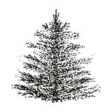 Hand drawn isolated object  monochrome fir-tree. Sketch, drawn with dots, pine tree Royalty Free Stock Images