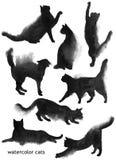 Hand drawn jaguar watercolor drawing Royalty Free Stock Photos
