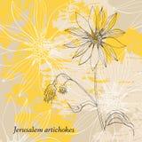 Hand drawn Jerusalem artichokes flower. Royalty Free Stock Photo