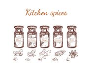 Hand Drawn Kitchen Spices Set Royalty Free Stock Photography