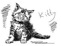 Hand drawn kitty cat Stock Photo