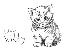 Hand drawn kitty. Vector illustration Stock Photography