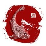 Hand drawn koi fish. Japanese carp line drawing with brush stroke Royalty Free Stock Photography