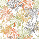 Hand drawn lace maple leaves seamless pattern Stock Photography