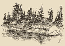 Hand drawn landscape lake and fir forest sketch. Hand drawn landscape with lake and fir forest vintage vector illustration Stock Photography