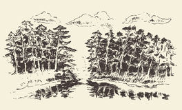 Hand drawn landscape lake and fir forest vector. Hand drawn landscape with lake and fir forest vintage vector illustration Stock Image
