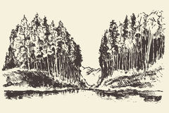 Hand drawn landscape lake and fir forest vector. Hand drawn landscape with lake and fir forest vintage vector illustration Stock Photography