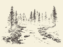 Hand drawn landscape river forest vintage vector. Stock Photography