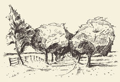Hand drawn landscape trees meadow illustration Royalty Free Stock Images