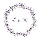 Hand drawn lavender wreath,. Illustration background Royalty Free Stock Images