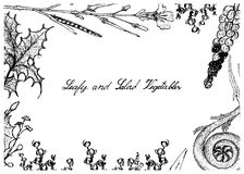 Hand Drawn of Leafy and Salad Vegetable Stock Photo