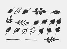 Hand drawn leaves, icons and elements royalty free illustration