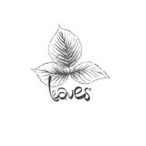 Hand drawn leaves Stock Image