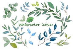 Hand drawn leaves, watercolor illustration. Green and blue spring, easter botanical elements.