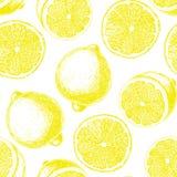 Hand drawn lemon pattern Stock Image