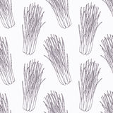 Hand drawn lemongrass branch outline seamless royalty free illustration