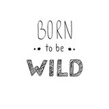 Hand drawn  lettering. Born to be Wild phrase. Stock Photo