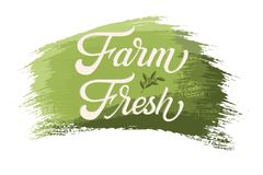 Hand drawn lettering Farm Fresh on a paint brush stroke. Vector Ink illustration. Typography poster on white background vector illustration
