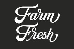 Hand drawn lettering Farm Fresh. Vector Ink illustration. Typography poster on black background. Organic, natural farm stock illustration