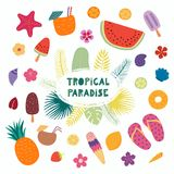 Tropical quote and elements stock illustration