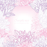 Hand drawn lily frame floral Stock Images