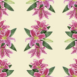 Hand-drawn lily seamless pattern. Gentle pattern with pink lily flowers Stock Images