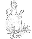 Hand drawn line art illustration of olive oil with olives. Isola Stock Photography