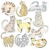 Hand drawn line cat set Stock Photography