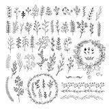 Hand drawn line floral elements . Big set Royalty Free Stock Photo