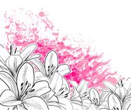 Hand drawn line vector lily card pink stock illustration