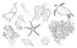 Hand drawn lineart sea life set Royalty Free Stock Image
