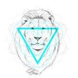 Hand drawn lion head Royalty Free Stock Image
