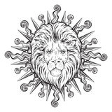 Hand drawn lion head in sun rays isolated over white background vector illustration. Flash tattoo or print design Stock Images