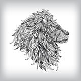 Hand Drawn Lion Illustration Royalty Free Stock Images