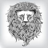 Hand Drawn Lion Illustration Royalty Free Stock Photos