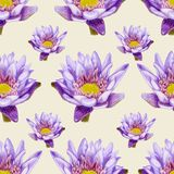 Hand-drawn lotus seamless pattern Royalty Free Stock Image