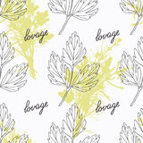 Hand drawn lovage branch and handwritten sign Royalty Free Stock Images