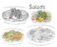 Hand drawn lunch menu of the salads Stock Image